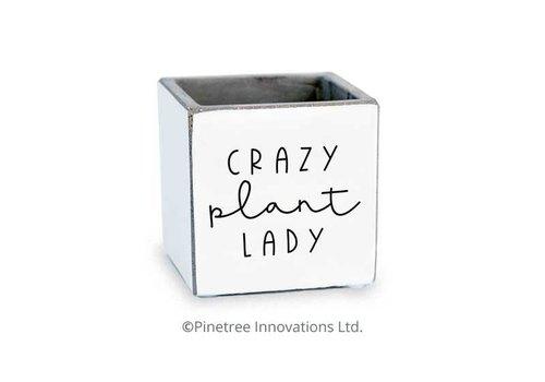 """Crazy Planter Lady Planter 3""""x3"""""""