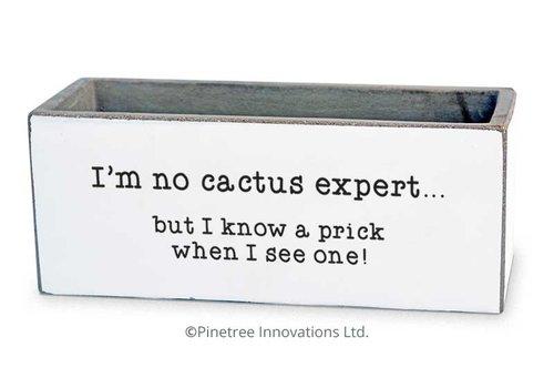 """I'm No Cactus Expert Planter 8""""x3"""""""