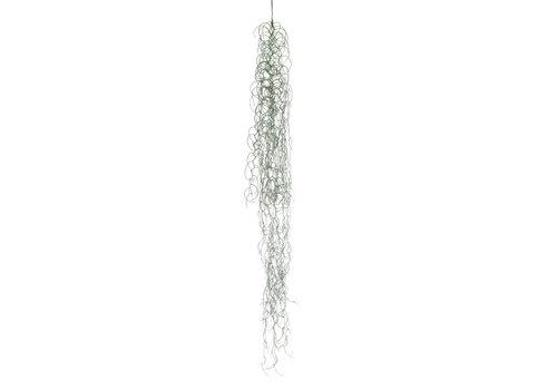 """Spanish Moss Hanging 47"""""""
