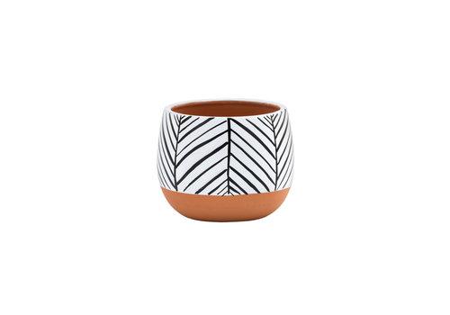 "Zebra Planter 4"""