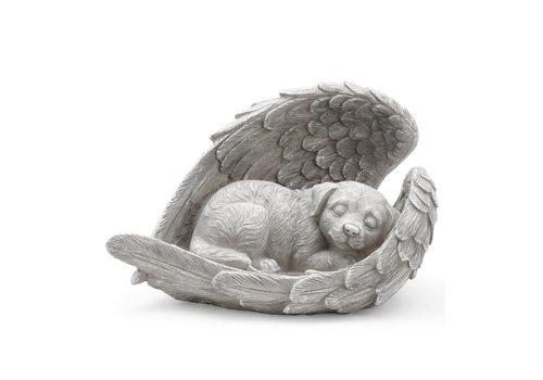 Sleeping Angel Dog