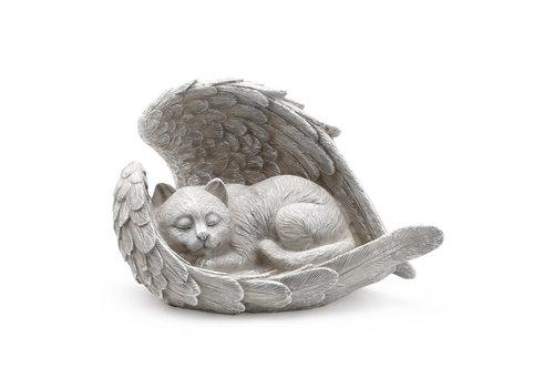 Sleeping Angel Cat