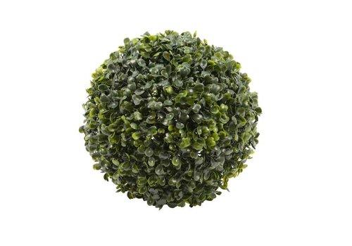 Boxwood Ball Green