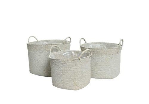Sea Grass Basket White