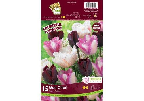 Colourful Companions Tulip Mon Cheri