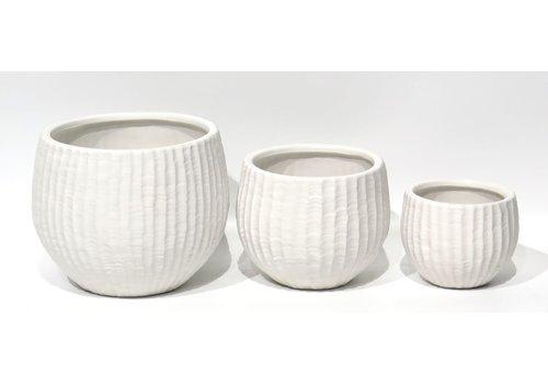 Matte Ceramic Pot