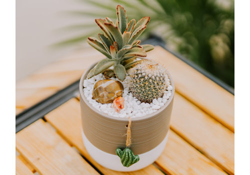 Sept 18th 4:00pm - Make + Take Class  - You Prickle My Fancy