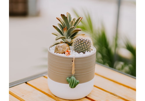 Sept 18th 11:00am - Make + Take Class  - You Prickle My Fancy