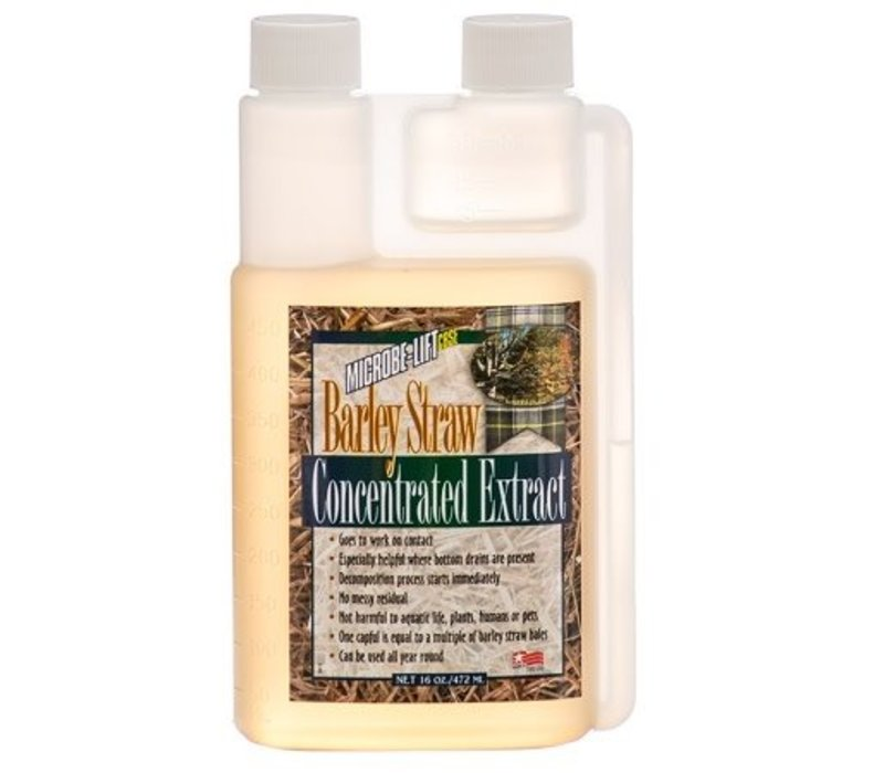 Concentrate Barley Straw Extract 16oz