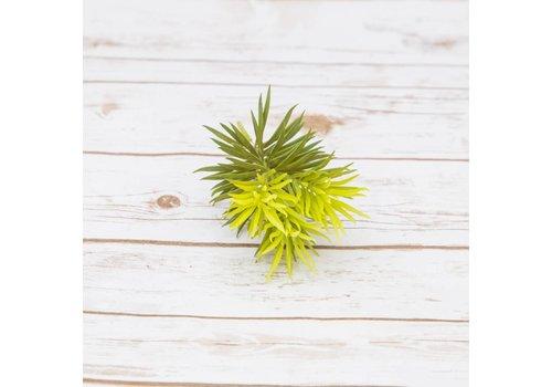 #22-19 Artificial Succulents Pine Needles 10cm x 18cm