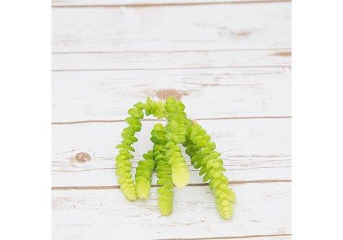 #22-19 Artificial Succulents Strings of Money 26cm