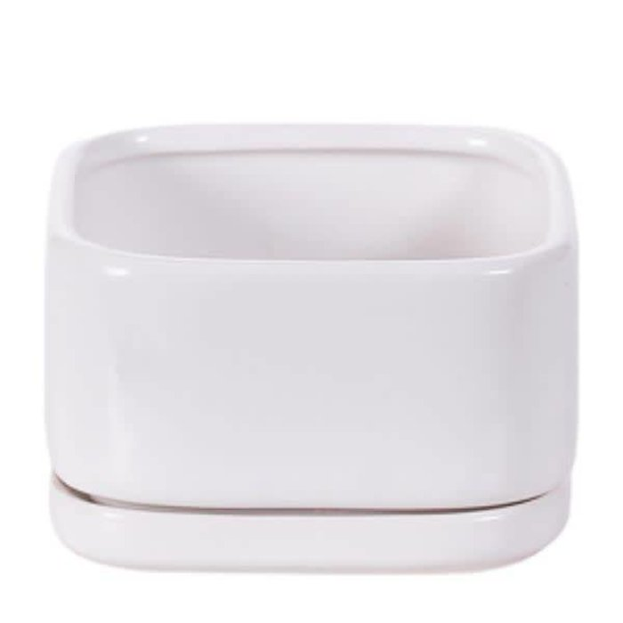 Square Matte White Pot With Saucer 3""
