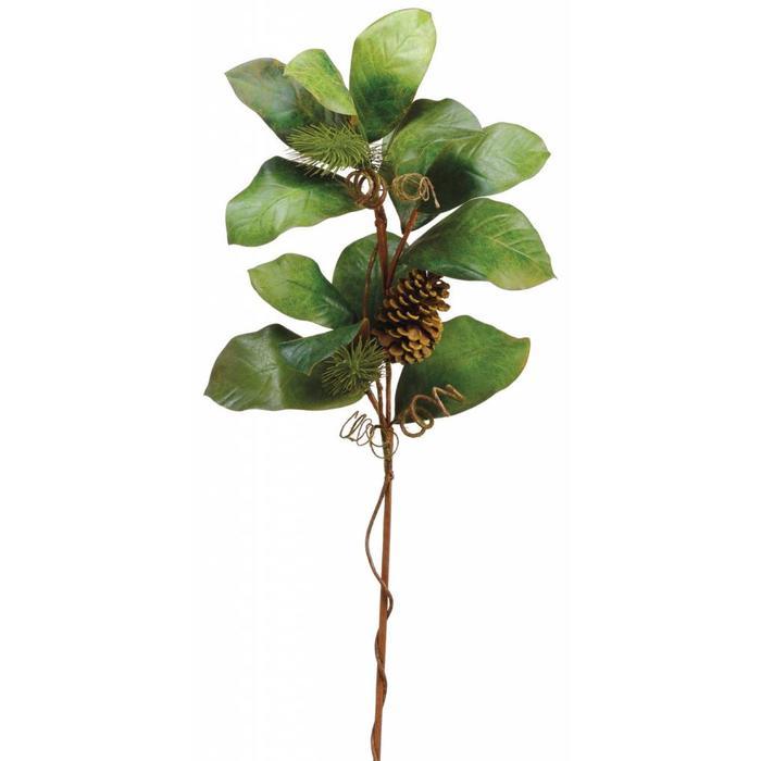 "Magnolia Leaf Pine Cone Spray 37"""