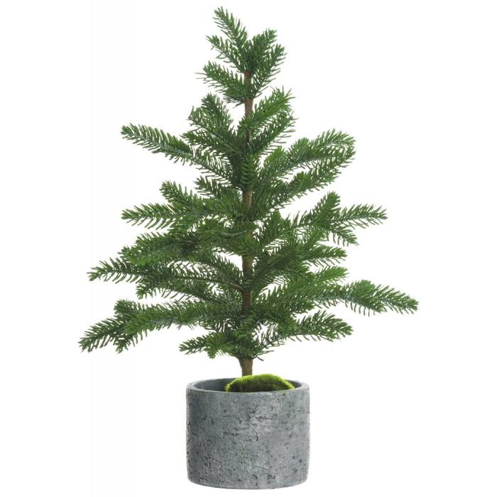 Pine Tree In Cement Pot 23""