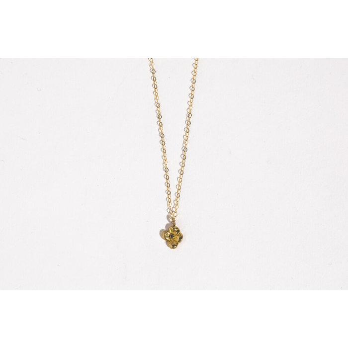 SC x Freda Primrose Necklace - Brass w/Sapphire