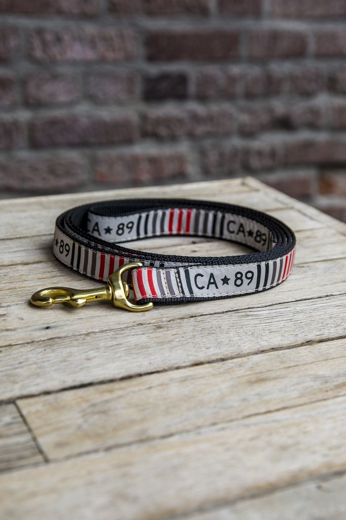 California 89 CA89 Dog Leash