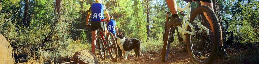 Top Ten Lake Tahoe Mountain Biking Trails For Fall California 89