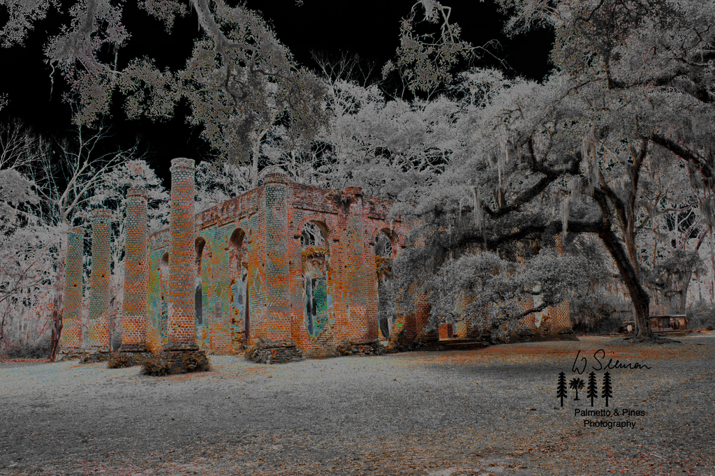 Art Prince William's Parish Church (Ruins) by Palmetto & Pines Photography