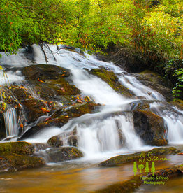 Art Waterfall Print by Palmetto & Pines Photography