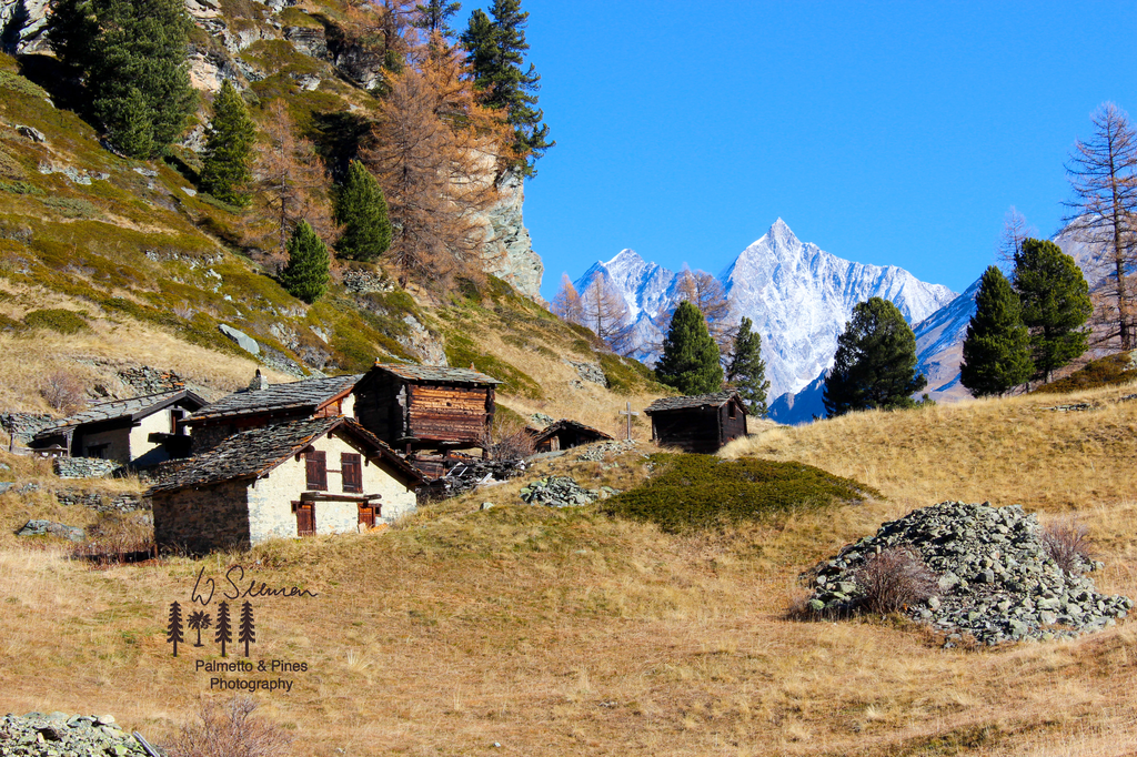Art Swiss Alps Print by Palmetto & Pines Photography