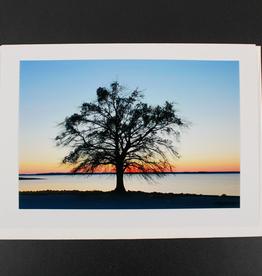 "Art Greeting Card by Craig Johnson ""Living on the Edge"""
