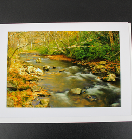 """Art Greeting Card by Craig Johnson """"Going With the Flow"""""""