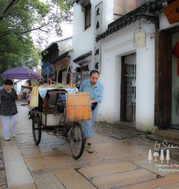 Art Suzhou China Print by Palmetto & Pines Photography