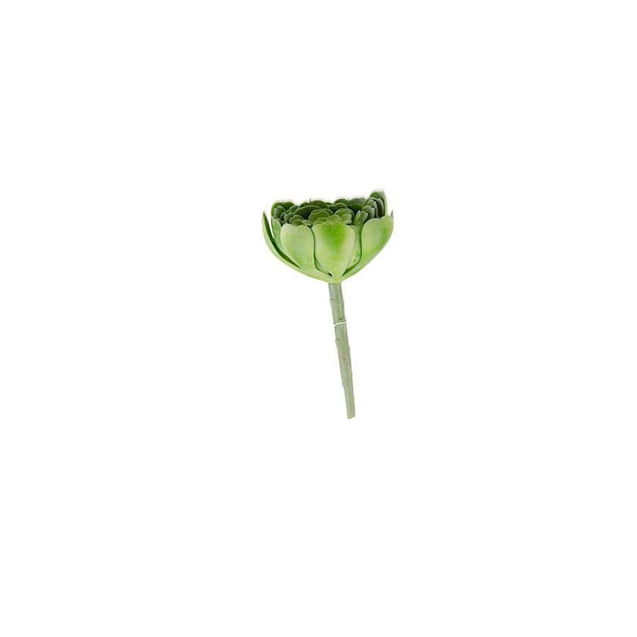 """6.5"""" GREEN AEONIUM SUCCULENT STEM"""