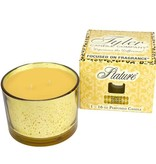 TYLER CANDLES 16 OZ STATURE GOLD ON GOLD