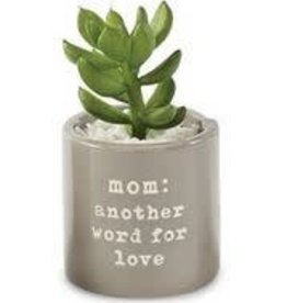 MUD PIE MOM SENTIMENT POTTED SUCCULENT