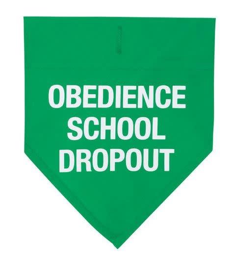 DOG COLLAR BANDANA- obedience school dropout L