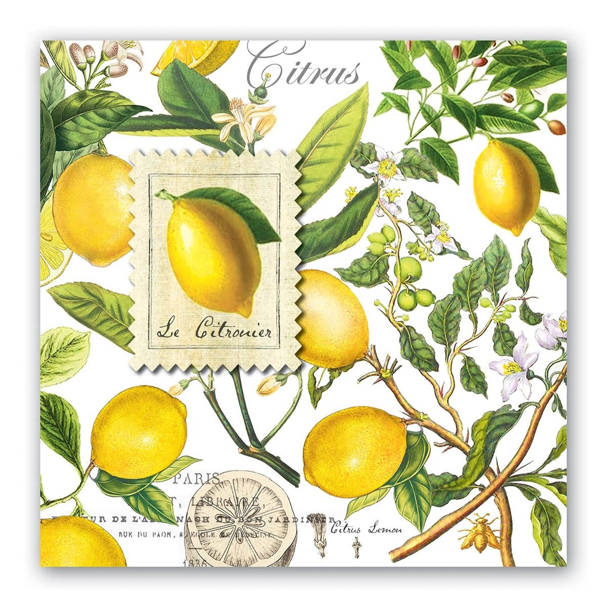 MICHEL DESIGN WORKS LEMON BASIL LUNCHEON NAPKINS