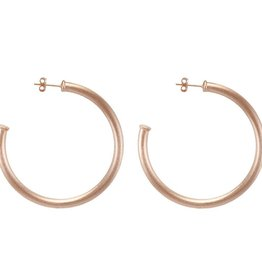 SHEILA FAJL EVERYBODY'S FAVORITE HOOPS- SMALL