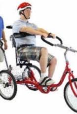 "Genesis Genesis Pro 20"" Adaptive Bike"
