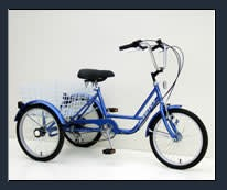 """Genesis 20"""" Tricycle: 6-Speed Freewheel"""