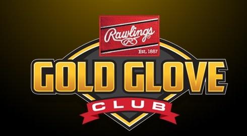 "Rawlings RAWLINGS HOH PRONP4-2BSP 11 1/2"" I/CV GLOVE GOLD GLOVE CLUB MARCH 2019"