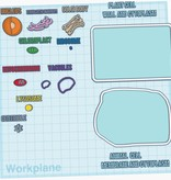 Animal and Plant Cell Construction Kit (Download in Description)