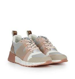 Sam Edelman Darsie Sneaker