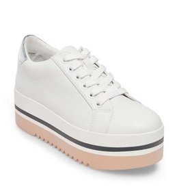 Steve Madden Alley Sneaker