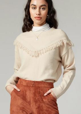 Greylin Arya Sweater Knit Pull Over
