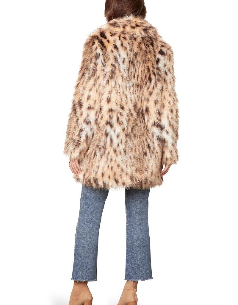BB Dakota Be Here Meow Coat