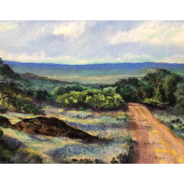 High Hill Country Spring