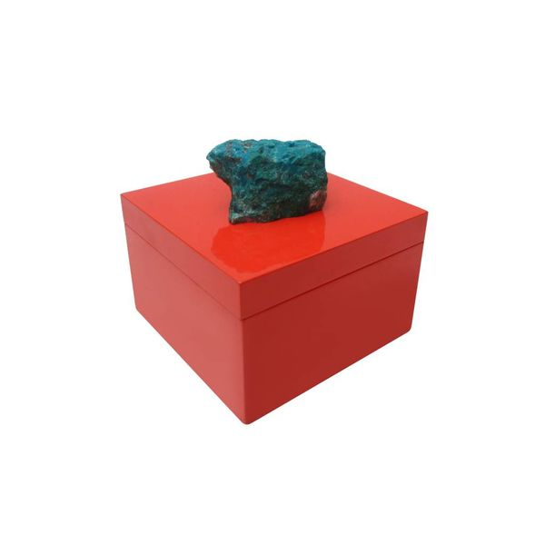 CORAL BUTTERFLY BOX