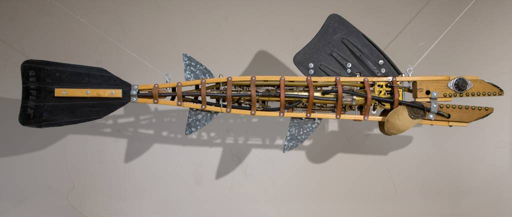 Saxabone Fish