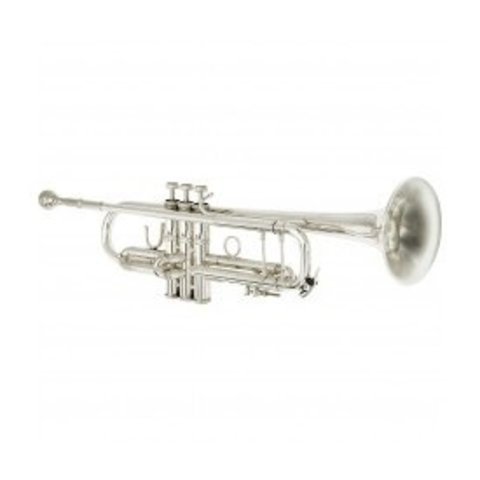 Eastman Professional Trumpet with a .459 bore and silver plate.