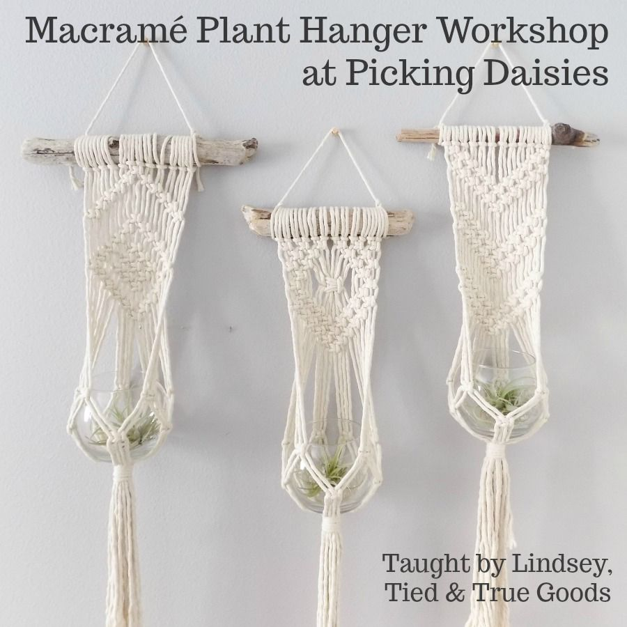 Lindsey of Tied & True Goods, Instructor 01/19/19: CLASS FULL! Macrame and Driftwood Plant Hanger Workshop