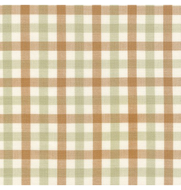 Carolyn Friedlander Harriot Yarn Dyed Woven, Double Check in Limestone, Fabric Half-Yards AFR-18112-340