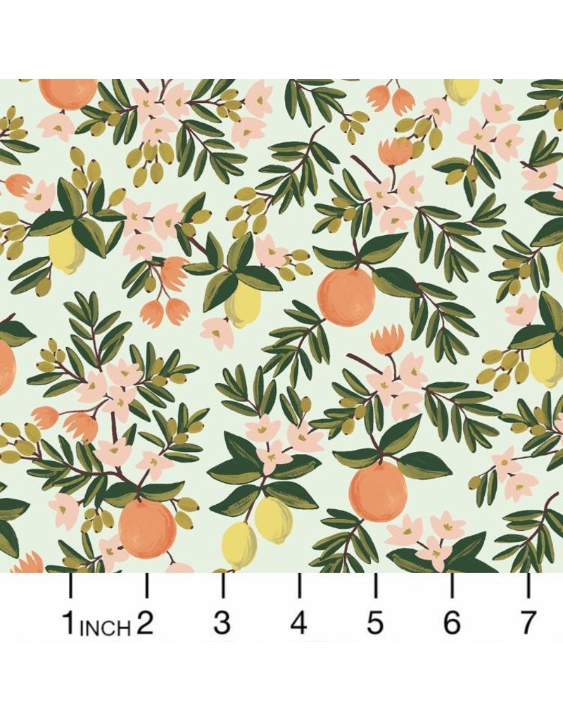 PD's Rifle Paper Co Collection Primavera, Citrus Floral in Mint, Dinner Napkin