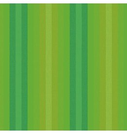 Alison Glass Kaleidoscope Stripes and Plaids, Stripes in Lichen, Fabric Half-Yards WV-9540