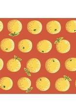 Kaffe Fassett Kaffe Collective 2020, Oranges in Yellow, Fabric Half-Yards  PWGP177 (ONE .5 YARD CUT REMAINING)